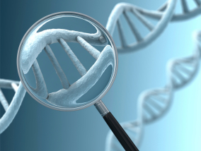 Genetics_Cloning_DNA_and_the_Law