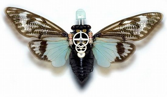 "Instead of attempting to create miniature robots as spies, researchers are now experimenting with developing insect cyborgs or ""cybugs"" that could work even better. So far scientists can already control the flight of moths using implanted devices."