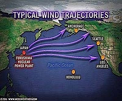 typical wind